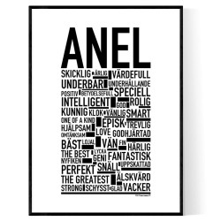 Anel Poster