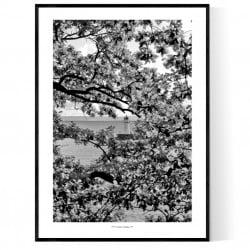 Lake Vättern Poster