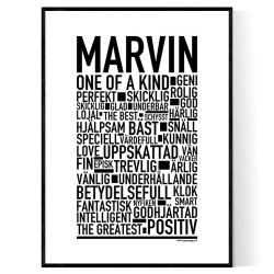 Marvin Poster