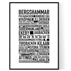 Bergshammar Poster