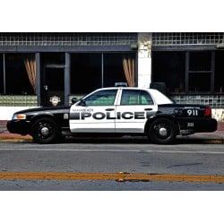 Miami Beach Cop