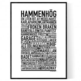 Hammenhög Poster