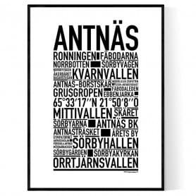 Antnäs Poster