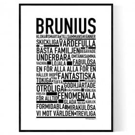 Brunius Poster