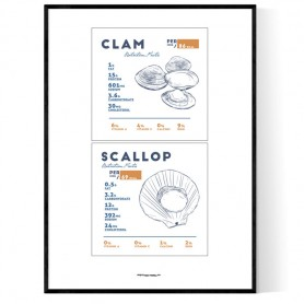 Clam Scallop Poster