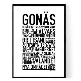 Gonäs Poster