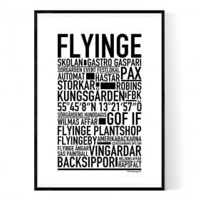 Flyinge Poster