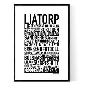 Liatorp Poster