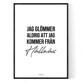 Från Hällnäs Poster