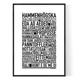 Hammenhögska Poster