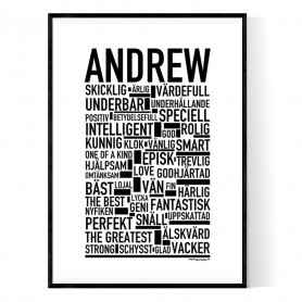 Andrew Poster