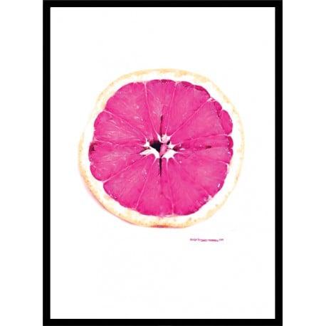 Pink Grape Poster