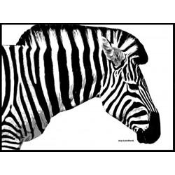 The Zebra Poster