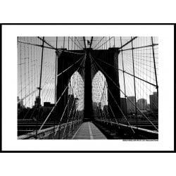 BK Bridge NYC