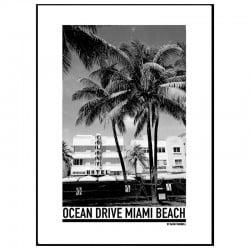 Miami Beach Affisch