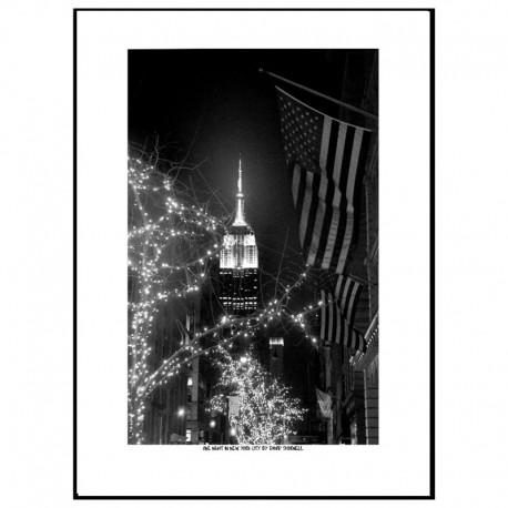 One Night In NY