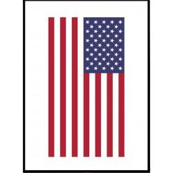 USA Flagga poster