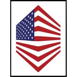 USA Kub Poster