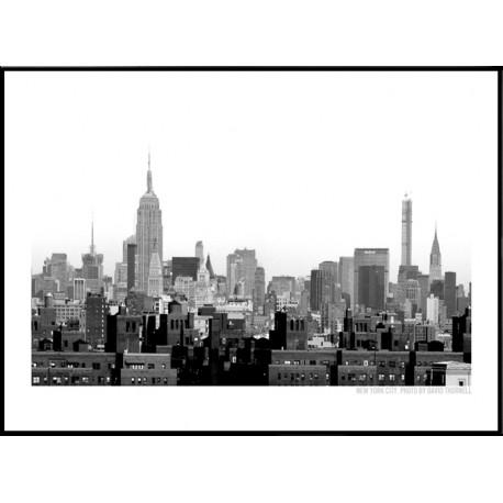 New York Scraper