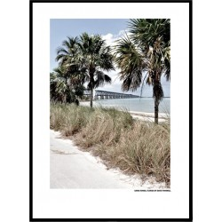 Florida Beach Posters